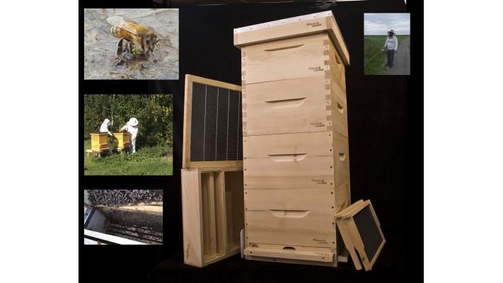 Achat d'une ruche avec service de coaching (une saison)