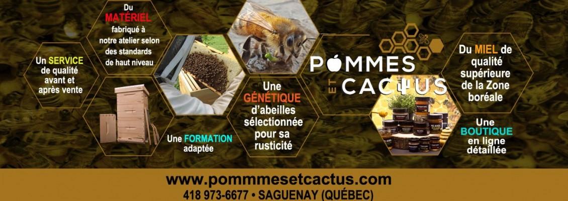 Pub-Pommes-et-cactus